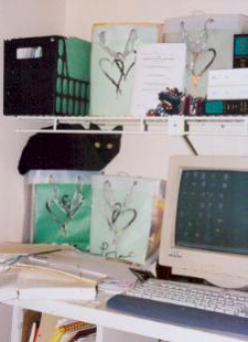 my_desk_and kittyxcf