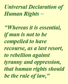 universal-declaration-of-human-rights-225